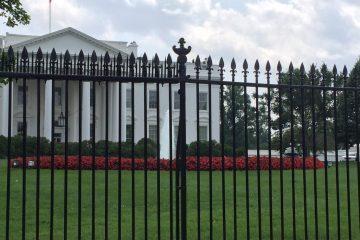 white house spikes