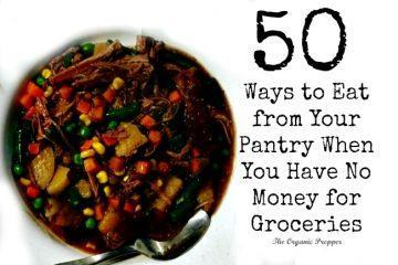 50-ways-to-eat-from-your-pantry-when-you-have-no-money-for-groceries