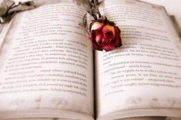 Romance-Novel-Public-Domain-460x333