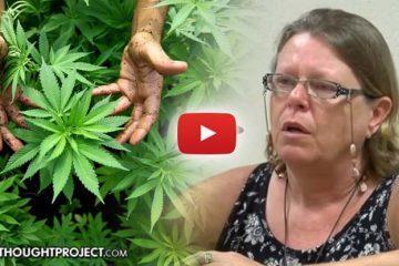 cannabis-jury
