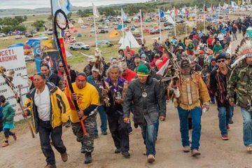dapl-protesters