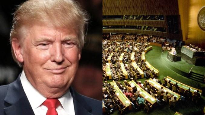 Image result for trump un