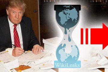 wikileaks-trump